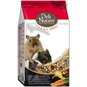 Rato, Gerbilo e Hamster (anão)